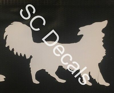 Border Collie white Vinyl Decal **free shipping in the USA