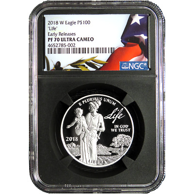 DEAL - 2018-W Proof $100 American Platinum Eagle Life NGC PF70UC Flag ER Label R