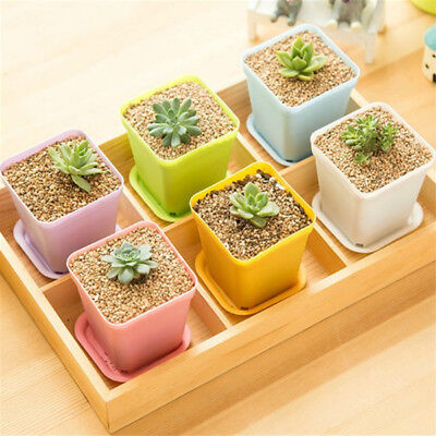 Durable Plastic Square Planter Flower Plant Candy Color Pot +Tray Nursery Home