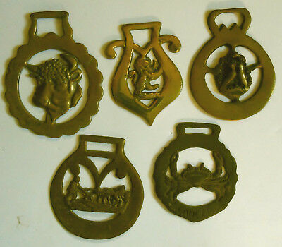 Group of Five Brass Saddle or Harness Medallions or Ornaments