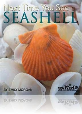 NEW Next Time You See A Seashell by Emily Morgan BOOK (Paperback) Free P&H