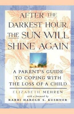 NEW After The Darkest Hour, The Sun Will Shine Again by... BOOK (Paperback)
