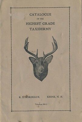 c1920 Taxidermy Catalogue, Bordeaux, Keene, NH, Animal Rugs, Figures, Birds