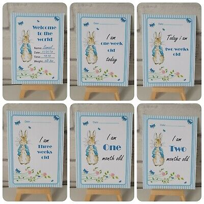 28 Rabbit Baby Milestone Photo Cards - 1st Year Memorable Shower Gift Boy Girl