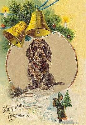 Dachshund Dog Wire Hair 1930s Lucy Dawson - LARGE New Blank Christmas Note Cards