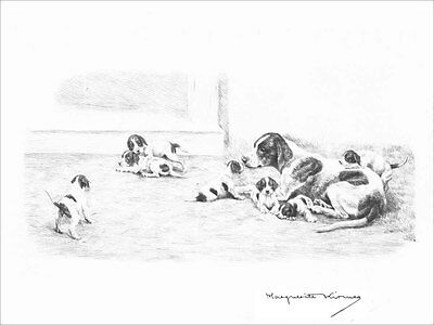 Pointer Dog w/ Puppies by Marguerite Kirmse 1935 8 New Blank Note Cards