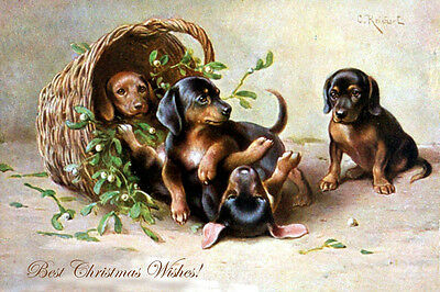 Dachshund Dog Puppies 1906 Carl Reichert - LARGE New Blank Christmas Note Cards