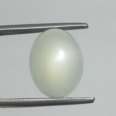 LARGE 18x13mm OVAL CABOCHON-CUT NATURAL INDIAN WHITE CATS-EYE MOONSTONE GEM