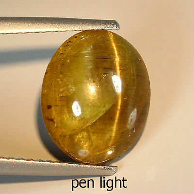 NATURAL UNHEATED BROWNISH GREEN APATITE CAT'S EYE OVAL CAB 6.19 Ct GEMSTONE