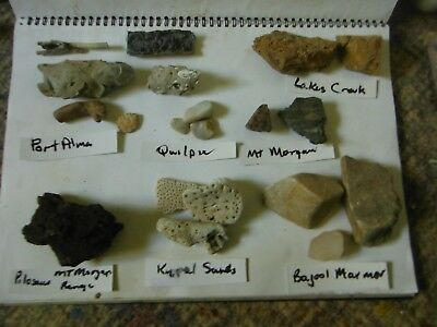Fossil collection Central Qld