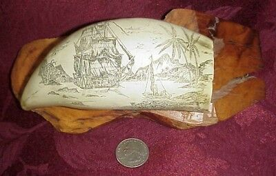 Vintage Scrimshaw Sperm Whale Tooth Artist Signed Faux Replica