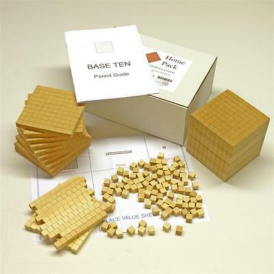 HELP with maths! 'Base Ten' PRIMARY SCHOOL MATHS blocks - with Parent Guide.