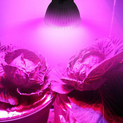8W 28 LED Grow Light Veg Flower Indoor Plant Hydroponics Full Spectrum Lamp