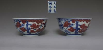 Pair Very Rare Chinese Blue And White Porcelain Bowls (253)