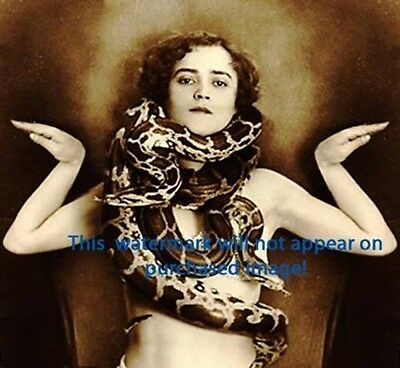 Old VINTAGE Antique CIRCUS SNAKE CHARMER Photo Reprint
