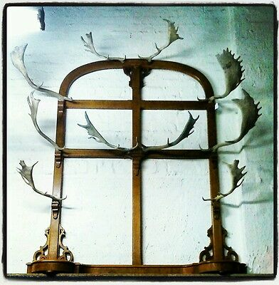 Antique 19th Century Staghorn Coatstand Vintage Antlers Taxidermy victorian