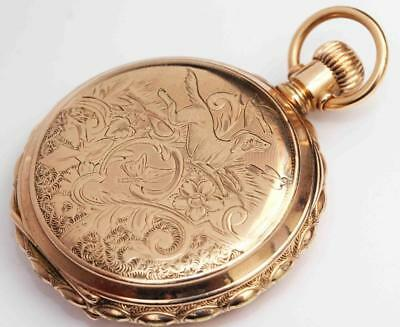 1895 antique ELGIN HUNTING CASE POCKET WATCH w/ DOG - ORNATE SCALLOPED EDGE