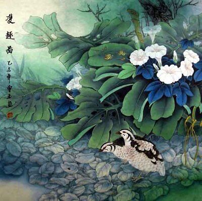 """Oriental Chinese Brush Painting Feng Shui Ink Art-Pigeons Morning Glory 19x19"""""""