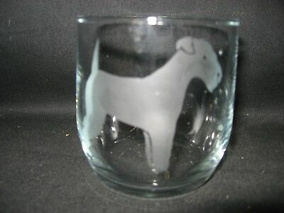 New Etched Lakeland Terrier Glass Tumbler