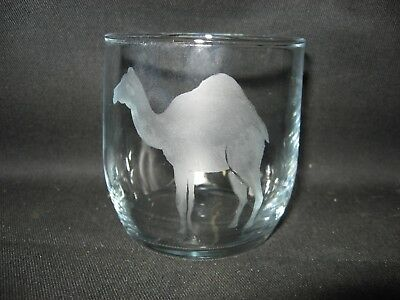 New Etched Camel Glass Tumbler