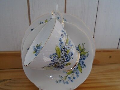 Regency bone china Forget-me-not trio. Large tea/breakfast cup, saucer and plate