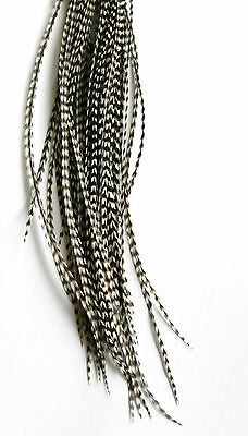 5x Grizzly Hair Feder Feather Extensions Haarfeder Natur ung.18-22cm Microringe