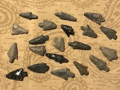 20 Argentine Pre Columbian Indian Arrowheads Authentic Artifacts