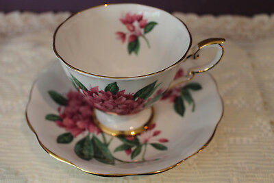 Royal Standard Tea Cup And Saucer - Rosamund - Artist Signed F F Errill