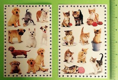 American Greetings Cat Dog Sticker Sheet Lot~Animals~Kitty~Kitten~Puppy~Pug~Lab