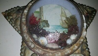 Victorian Souvenir Shell Art Wall Hanging Star Shape