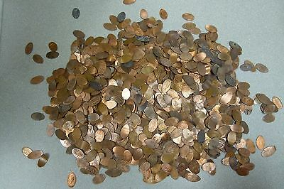 500 Elongated Pennies