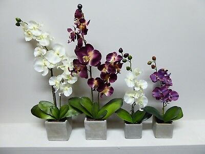 Artificial Orchid Flowers Plant in Grey Stone Pot Orchid Potted Plant