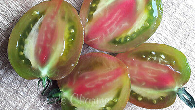 10 graines de tomate rare unique Coeur De Surpriz vegetables tomato seeds bio