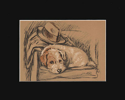 Sealyham Terrier  Puppy Dog Print 1937 by Lucy Dawson 8 X 10 WAITING FOR DADDY