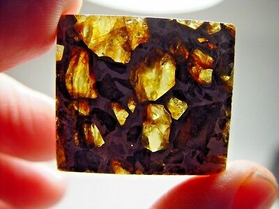 Museum Quality! Amazing Crystals! Beautiful Brahin Pallasite Meteorite 17.2 Gms