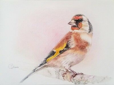 Drawing Wax Pencil On Paper Painting Bird Drawing Art Goldfinch Realism Animal