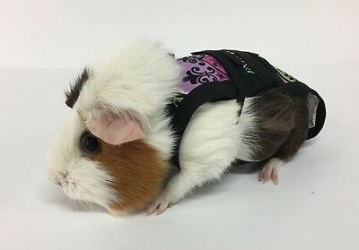 Piggy Pants Guinea Pig Diapers-Purple Flowers***FREE SHIPPING***