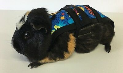 Piggy Pants Guinea Pig Diapers-WOW***FREE SHIPPING***
