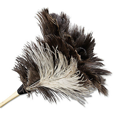"Boardwalk Professional Ostrich Feather Duster 7"" Handle 13FD"
