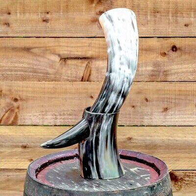 Real Ox Viking warrior drinking horn with bovine horn stand for beer ale whisky