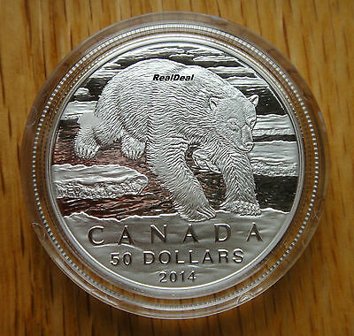 2014 Canada $50 for $50 Polar Bear. 99.99% pure silver