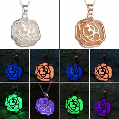 Magic Luminous Steampunk Fairy Rose Glow In The Dark Chain Pendant Necklace New