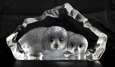 Hand Etched Crystal Seal Pups - Mats Jonasson - New From Gallery - (18475)