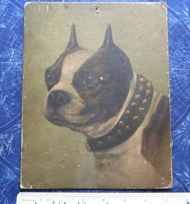 Vintage (7x9) Cardboard Picture Wall Art Boston Terrier Breed Puppy Dog hj3936