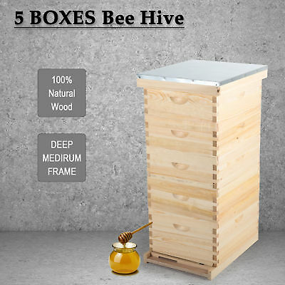 5 Brood Box For10-Frame Beehive /Bee Hive Frame for Beekeeping w/ Metal Roof