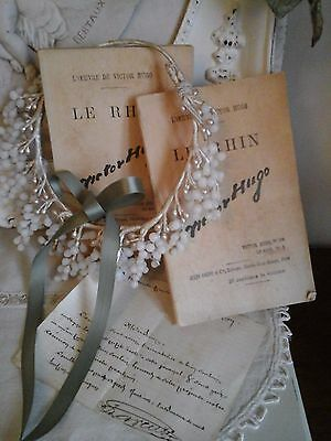 Antique French Books~LE RHIN~ Victor Hugo~Editor Jules Rouff~Paris~Ancient Decor