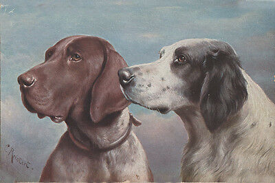 English Setter & German Pointer Dogs by C REICHERT - LARGE New Blank Note Cards