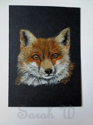 ACEO Original coloured pencils & watercolour painting- Red Fox by Sarah:)xx