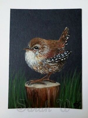 ACEO Original coloured pencils & watercolour painting- wren by Sarah:)xx