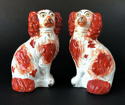Adorable PAIR of 'number 6' RED SPANIELS, Staffordshire, circa 1860